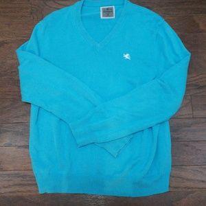 Express Men's V Neck Sweater